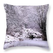 Winters First Icy Breath Throw Pillow