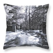 Winter's Gates Throw Pillow