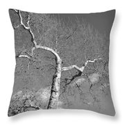 Winter's Ghost Throw Pillow