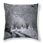 Winters Lane Throw Pillow