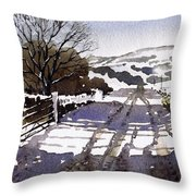 Winters Lane Stainland Throw Pillow