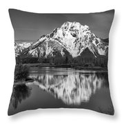 Winter's Last Hold Throw Pillow