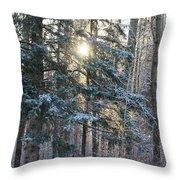 Winter's Midday Light Throw Pillow