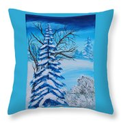 Winters Palette Throw Pillow