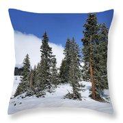 Winter's Peace Throw Pillow