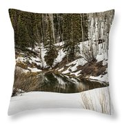 Winters Pond Throw Pillow