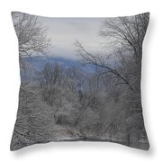 Winters Retreat Throw Pillow