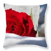 Winters Rose Throw Pillow