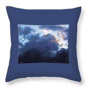 Winter's Solace Throw Pillow