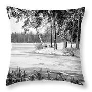 Winter's Tropical Landscape Throw Pillow