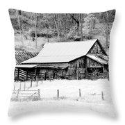 Winter's White Shroud Throw Pillow by Tom Mc Nemar
