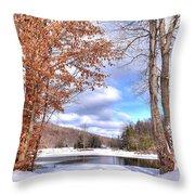 Winters Window Throw Pillow