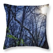 Wintersun Throw Pillow