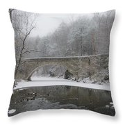 Wintertime In The Wissahickon Valley Throw Pillow