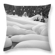 Winterwonderland Throw Pillow