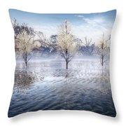 Wintery Coast Throw Pillow