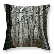 Wintery Day Throw Pillow