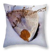 Wintery Still Life Throw Pillow