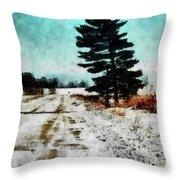 Wintry Altona Road Throw Pillow