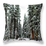 Wintry Forest Drive Throw Pillow