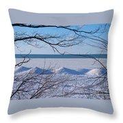 Wintry Lakeshore Throw Pillow