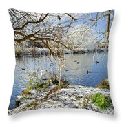 Wintry River At Newton Road Park Throw Pillow