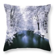 Wintry White Throw Pillow