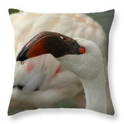 Wipe Your Chin Throw Pillow