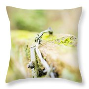 Wire On The Fence Throw Pillow