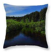 Wisconsin River In Vilas County Throw Pillow