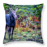 Wise And Strong Throw Pillow