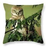 Wise Watcher Throw Pillow