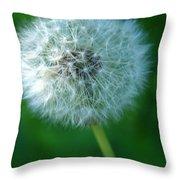 Wishful Thinking Throw Pillow