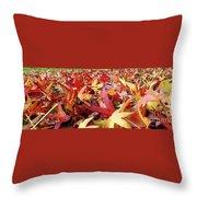 Wishing For Fall Throw Pillow