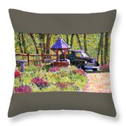 Wishing You Well Throw Pillow