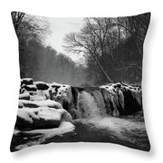 Wissahickon Snow Throw Pillow