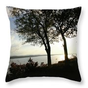 Wister Trees Throw Pillow