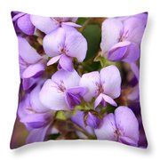 Wisteria Blossoms Throw Pillow