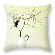 Witches' Broom Throw Pillow
