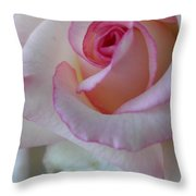 With A Dash Of Pink Throw Pillow