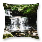 With A Full Heart Throw Pillow