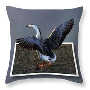 With A Nod Of The Head And A Twist Of The Tail Throw Pillow