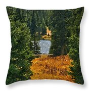 With A View Throw Pillow