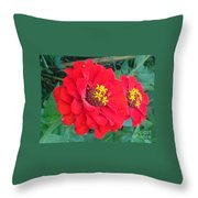 With Beauty As A Pure Red Rose Throw Pillow