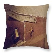 With Decades Of Time Throw Pillow