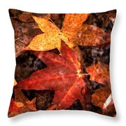 With Love - Autumn Pond Throw Pillow