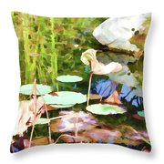 Withered Lotus In The Pond 2 Throw Pillow