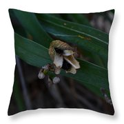 Withering  Throw Pillow
