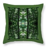 Within Another Dimension  Throw Pillow