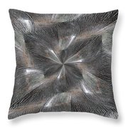 Within Without Throw Pillow